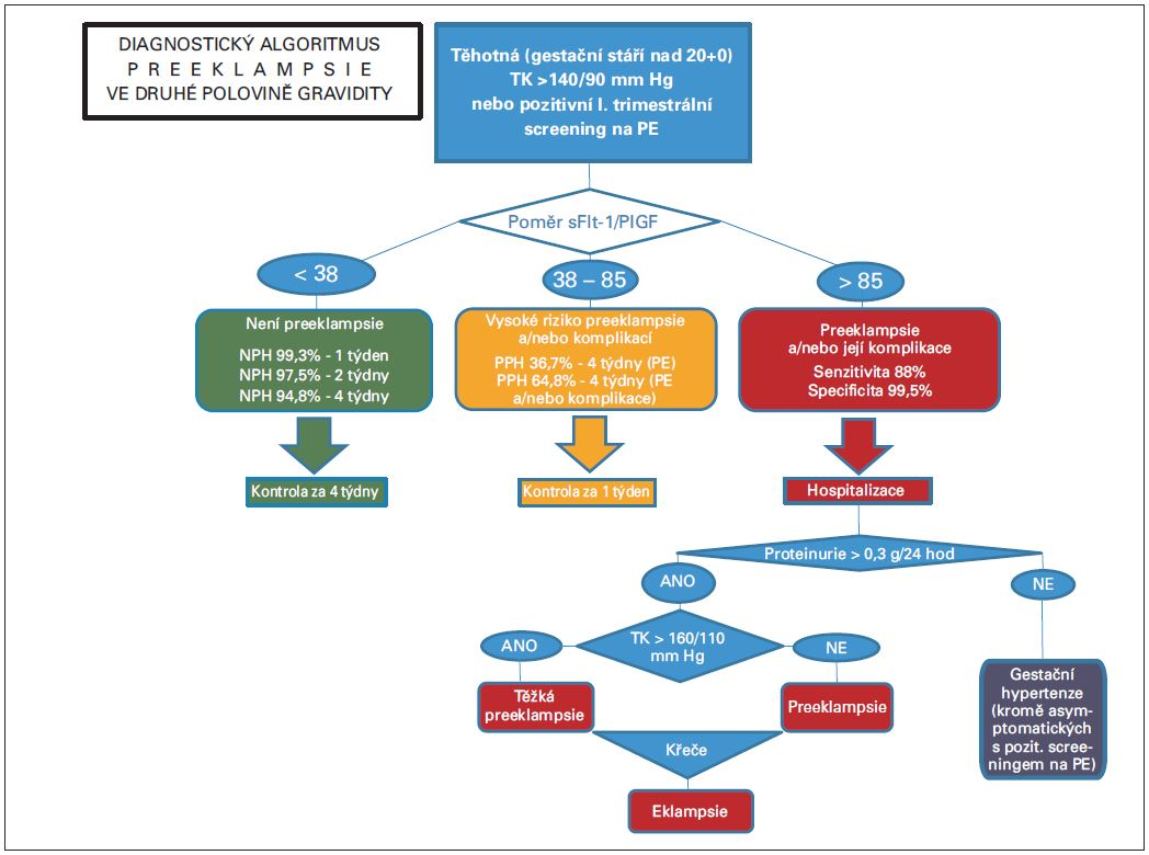 Diagnostický algoritmus preeklampsie ve druhé polovině gravidity
